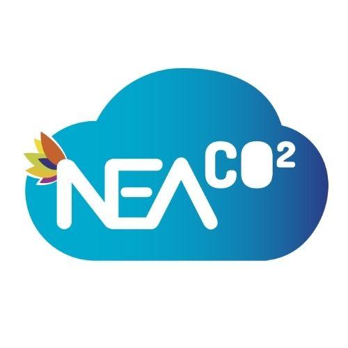 NEA CO2
